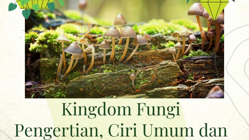 Kingdom Fungi. Pengertian, Ciri Umum dan Klasifikasinya.