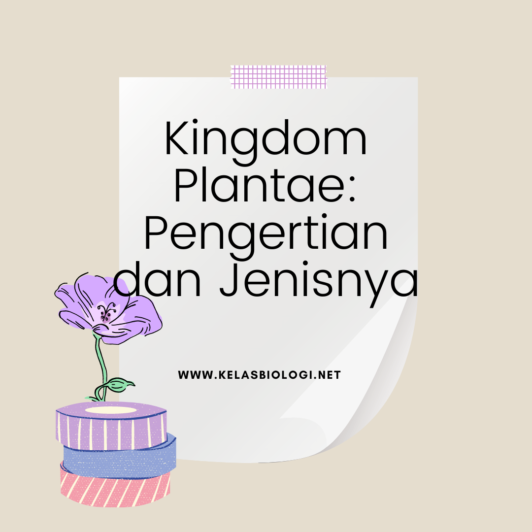 Kingdom Plantae : Pengertian dan Jenisnya