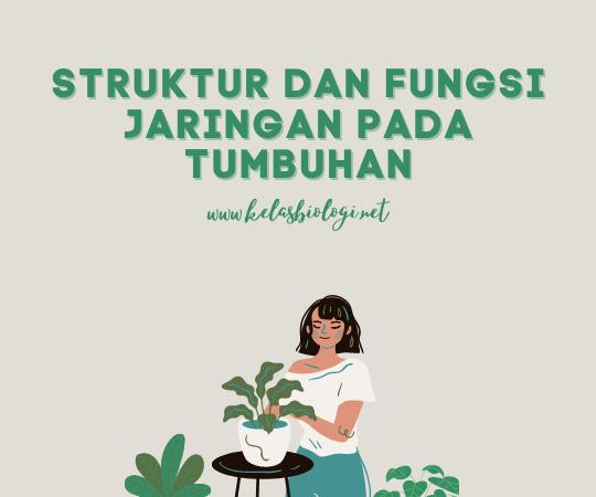 Struktur dan Fungsi Jaringan pada Tumbuhan